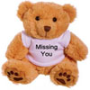 ♥Missing You♥