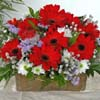 Red Daisies Basket.